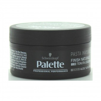 PALETTE STYLING PASTA INVISIBLE 100 ML.